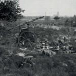 Een van de weinige artilleriestellingen, hier op de Brugse Berg